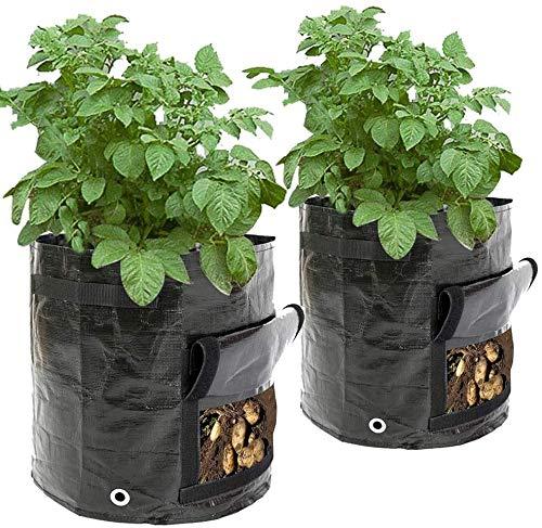 Cefrank 2er Pflanzsack groß, 40 L, 34 x 35cm, Gronest Pflanzsäcke für Kartoffel, Erdbeer Karotten, Erdbeeren Grow Bag