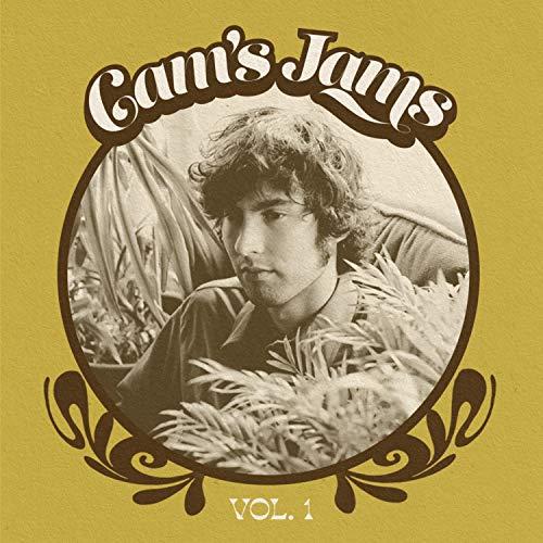 Paisley Curtain (Hits of Sunshine)