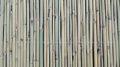 Bambusmatte Sichtschutz Bambus Gartenzaun Windschutz Sichtschutzmatte 150 x 200 Schilfrohrmatte Weidenmatte Rindenmatte