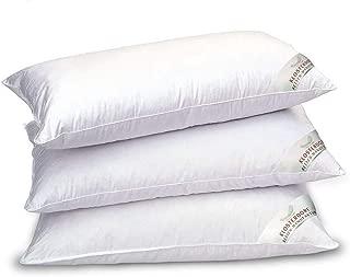 polyester Clinilab CLTSOF065TAI oreiller confort et relaxation mousse /à m/émoire de forme blanc 65 x 65 cm