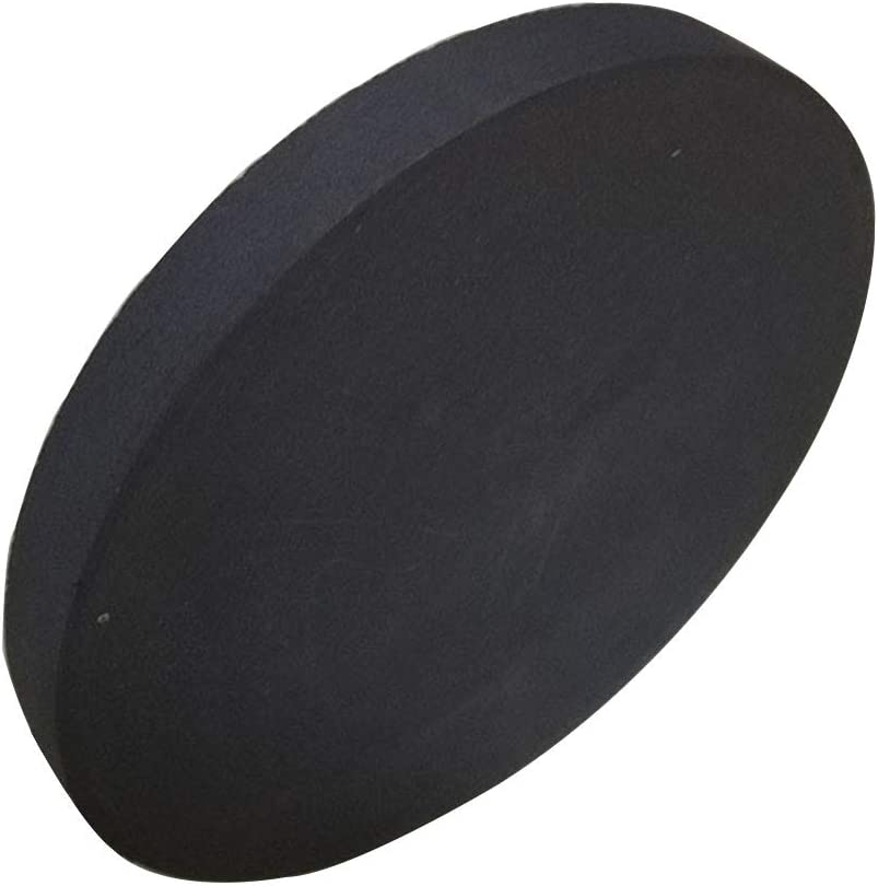 Zewoi Graphite Round Plate Block Graphite Column for Melting Casting Chemical Industry,Diameter:50mm Thickness:25mm