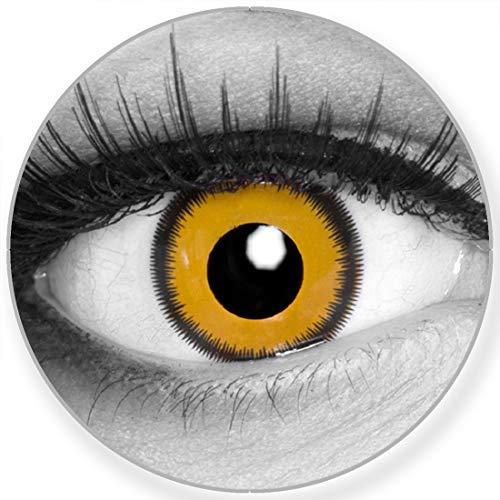Funnylens Farbige Kontaktlinsen Lunatic Sun gelb schwarz - ohne Stärke 2er Pack + gratis Behälter – 12 Monatslinsen - perfekt zu Halloween Karneval Fasching oder Fasnacht
