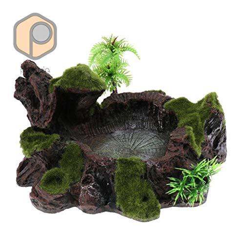 donfhfey827 Plant Decor Reptile Bowl Feeder Schaal Voor Water, Voedsel, Calcium Dust, Gel, enz.