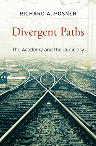 Divergent Paths: The Academy and the Judiciary (English Edition)