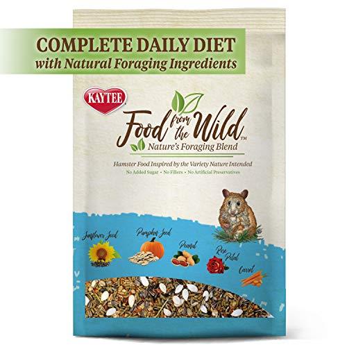 Kaytee Food from The Wild