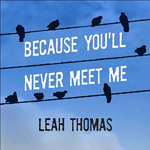 Because You'll Never Meet Me audiobook cover art