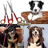 Hundeschere – Set mit 2 Scheren zur Fellpflege für Hunde – Fellscheren aus Edelstahl mit abgerundeter Spitze - 7