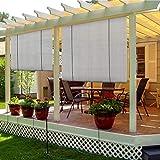 TANG Sunshades Depot Exterior Roller Shade Blinds Roll up Shade for Outdoor Patio Deck Porch Pergola Balcony Backyard Light Filtering Block 90% UV Rays 8' W x 6' L Light Grey