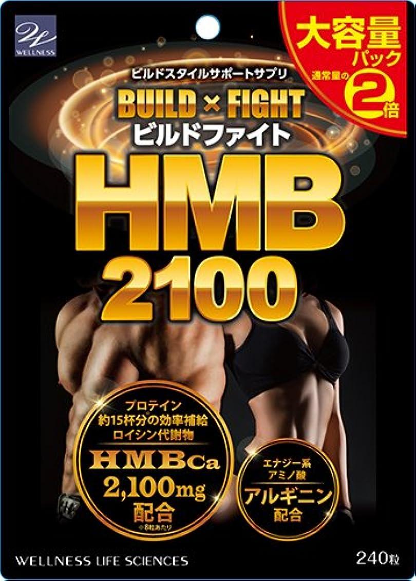かりて定説竜巻ウエルネスライフサイエンス ビルドファイト HMB2100 大容量パック 240粒