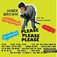 Please Please Please [12 inch Analog]