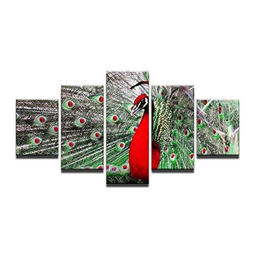 GIAOGE Ingelijste onregelmatige pauwenveren, modern canvas schilderij dier muurkunst van cijfers modulaire afbeeldingen mit gerahmten 40x60 40x80 40x100cm
