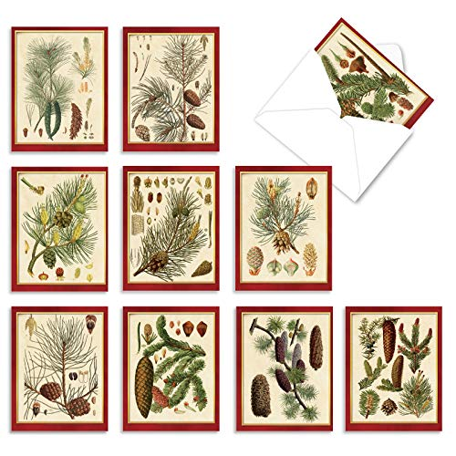 """10 Assorted 'Pining for Christmas' Holiday Note Cards with Envelopes (Mini 4"""" x 5.25""""), Blank Greeting Cards with Vintage Pine Cones, All Occasion Stationery for New Year, Winter, Hanukkah #M9627OCB"""
