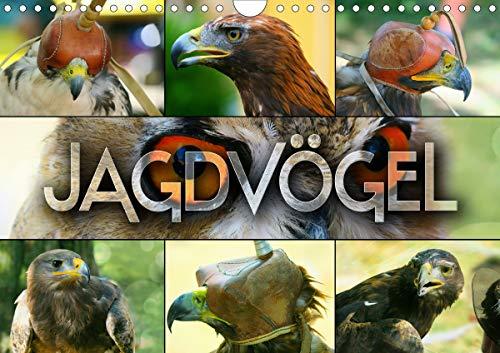 Jagdvögel (Wandkalender 2021 DIN A4 quer)