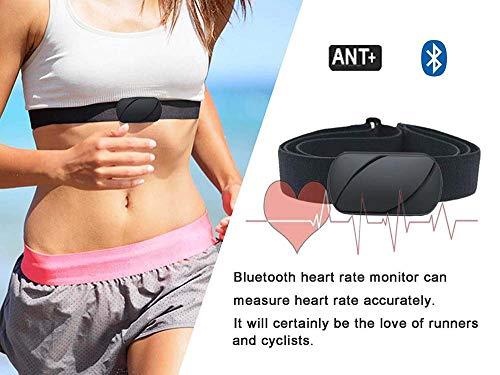 EBUYFIRE Monitor de frecuencia cardíaca, Bluetooth/Ant+ Sensor de frecuencia cardíaca inalámbrico, IPX6 Resistente al Agua, Apto para iPhone, Android, Ordenadores y Relojes