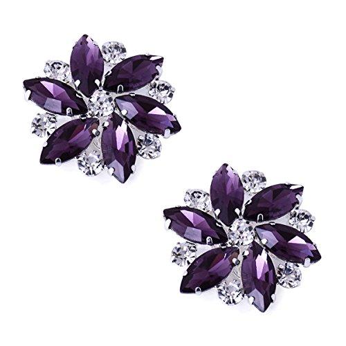 Duosheng & Elegant AJ Cristal Robe Chapeau Clips de décorations de chaussures Accessoires Mode Strass Mariage Bal de promo Fête Clips de chaussures 2 Pcs Violet