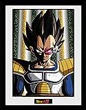 GBeye Collector Print - Dragon Ball Z Vegeta PFC2616,