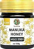 functia マヌカハニー【MGO550+】250g『メチルグリオキサール含有量 550mg/kg以上』
