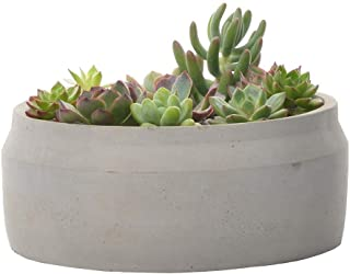 Cement Succulent Planter Pot Indoor Outdoor Decorative with Drainage Round Ceramic Rustic Flower Pots for Home Garden (7'', Grey)
