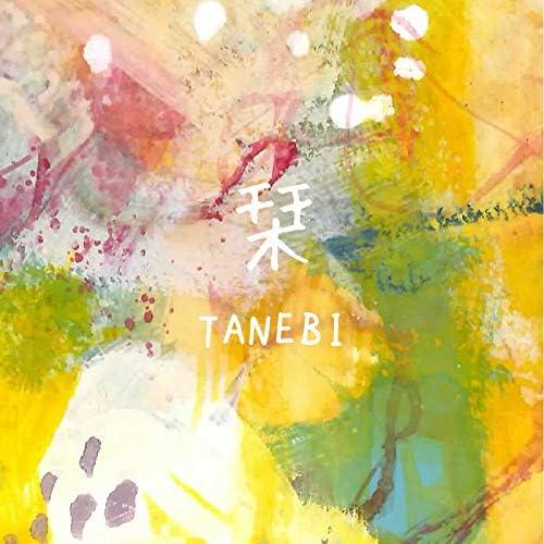 TANEBI
