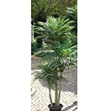 artplants.de Künstliche Areca Palme mit 1312 Blättern, 3 - stämmig, 150cm - Plastik Goldfruchtpalme - Kunstpalme