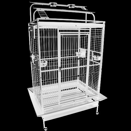 King's Cages 8004030 Parrot CAGE 40x30x72 Play Pen Bird Cages Toy Cockatoo Macaw (White)