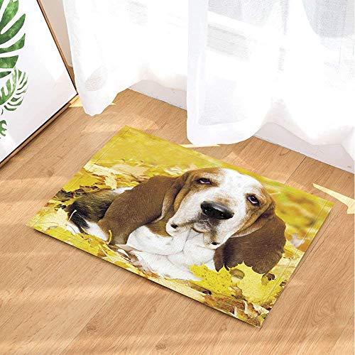 HYTCV Yellow Land, Yellow Leaves, White Brown Pug, Black Nose, Black Eyes Bathroom mat outdoor indoor non-slip mat