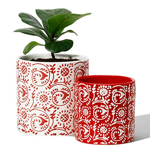 5.9 + 4.7 Inch Modern Ceramic Cylinder Flower Pots with Drainage Only $16.19