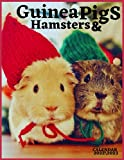 guinea pigs and hamsters calendar 2022  2023: guinea pigs and Hamster Wall Calendar 2022-2023 , Size 8.5 x 11 Inch , Monthly Calendar , 18 Month ... quality images Glossy Finish For Women, Men