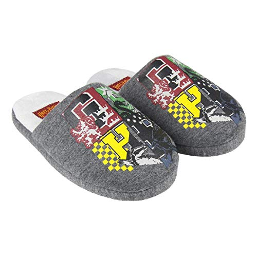 Zapatillas de interior para niños y niñas Harry Potter, color gris del 28 al 35 (EU, numeric_30)