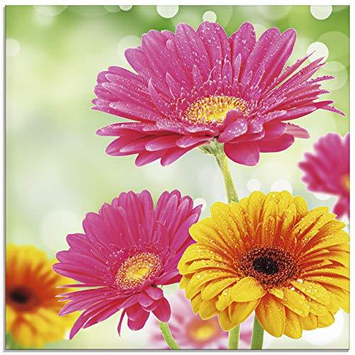 Artland Glasbilder Wandbild Glas Bild einteilig 50x50 cm Quadratisch Natur Blumen Blüten Gerbera Frühling Landhaus T5TJ