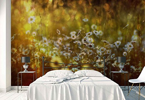 Vlies Fototapete Fotomural - Wandbild - Tapete - Gänseblümchen Frühlingsblumen Wiese - Thema Blumen - XL - 368cm x 254cm (BxH) - 4 Teilig - Gedrückt auf 130gsm Vlies - 1X-51518V8