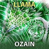 Ozain Llama