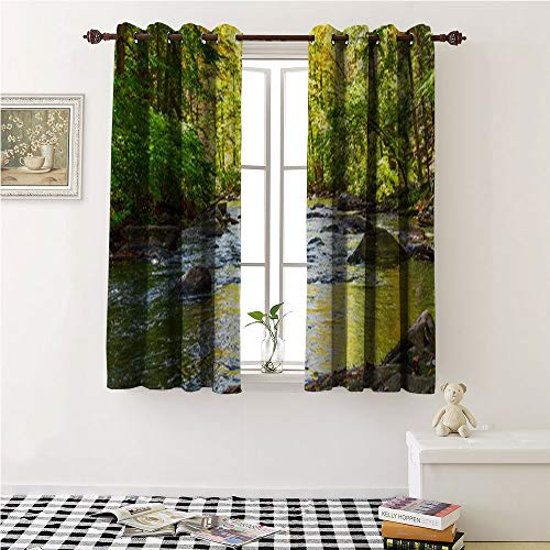 """Iuvolux Country Curtain Grommet Curtains The Black River in hacklebarney State Park in nj with Autumn refections on The Water Short Curtain 108"""" W by 90"""" L"""