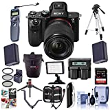 Sony Alpha a7II Mirrorless Digital Camera w/FE 28-70mm f/3.5-56 OSS Lens - Bundle with Holster Case, 64GB Class 10 SDHC Card, 55mm Filter Kit, 2xSpare Batteries, Tripod, Video Light, and More