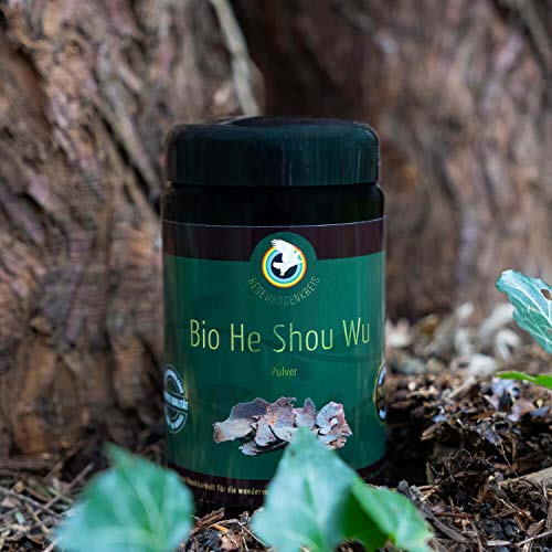 Regenbogenkreis He Shou Wu Pulver, Bio Qualität Violettglas 250g (14,00 € / 100 g)