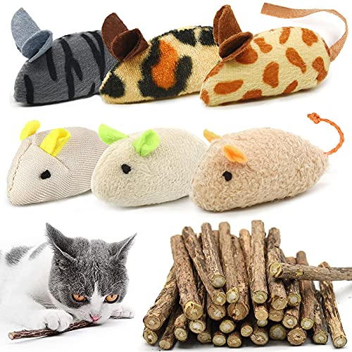 winbarry 30 Stück Katzenminze Sticks+6 Katzenminze Spielzeug, Matatabi Katzen Kauhölzer, Katzen kauspielzeug,Katzenminze Plüsch Spielzeug,Katzenspielzeug für Katze zu Spielen, Beißen, Kauen