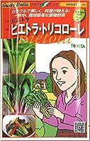 ビエトラ トリコロール 種子 Bietola 和名:ふだんそう 赤、黄、白 3色各20粒