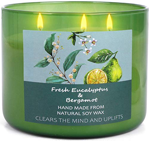Soy Candles For Home Scented Aromatherapy Eucalyptus and Bergamot Stress Relief Candles Relaxing Gifts for Women and Men | 16 Oz Long Lasting Essential Oil 3 Wick Candle Meditation Candles For Bedroom