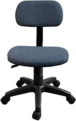 Amazon.com: Office Desk Chair Modern Office Chair Computer ...
