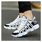 Moda Hombres Zapatillas de lujo Zapatillas de lujo Split Cuero Ciudad Ocio Ocio Zapatos Casual Zapatos transpirables Calzado Calzado Masculino Pisos ( Color : Summer Mesh White , Shoe Size : 45 )