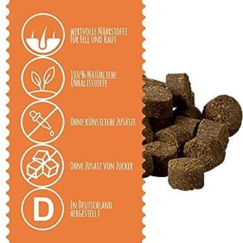 Schnüffelfreunde Fell & Haut   Complément Alimentaire pour Chiens - pour Le Pelage, Fourrure et la Peau - Fabriqué en Allemagne