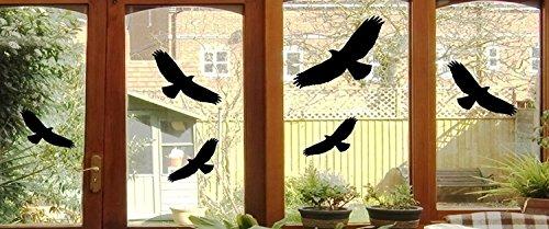 6 vogel stickers - vogels raam glas grijpvogel raambeeld 24 x 10 cm B397 (zwart)