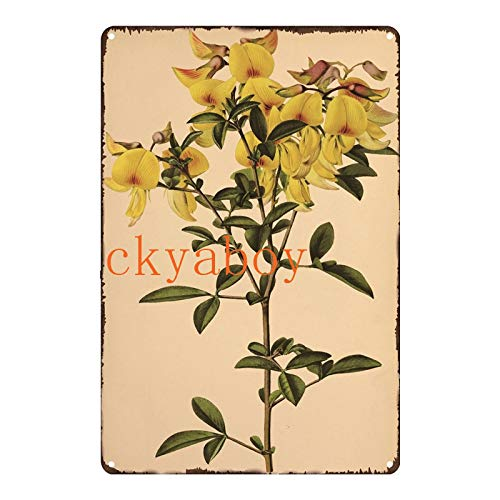 ivAZW Tin Signs Flower Fruit Metal Poster Vintage Painting Wall Art Decor Family Home Room Outdoor Decoration 20x30cm SW548