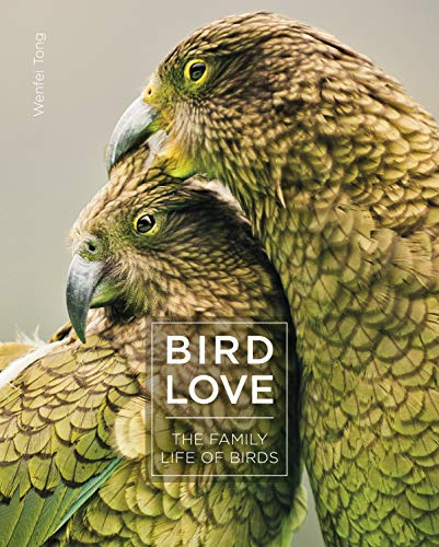 Compare Textbook Prices for Bird Love: The Family Life of Birds  ISBN 9781782407485 by Tong, Wenfei