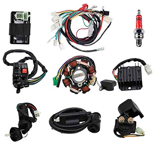 Complete Wiring Harness kit With Electrics Stator Coil CDI Wiring Harness Solenoid Relay Spark Plug For ATV Quad 4 Four Wheelers 150CC 200CC 250CC Go Kart Dirt Pit Bikes by KAKO