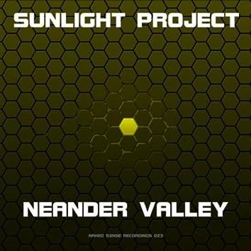 Neander Valley (Original)