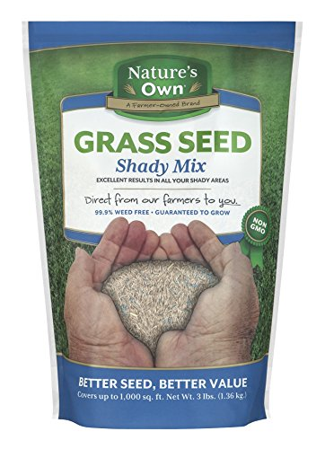 Mountain View Seeds Natures Own Shady Mix Grass Seed, 3-pounds