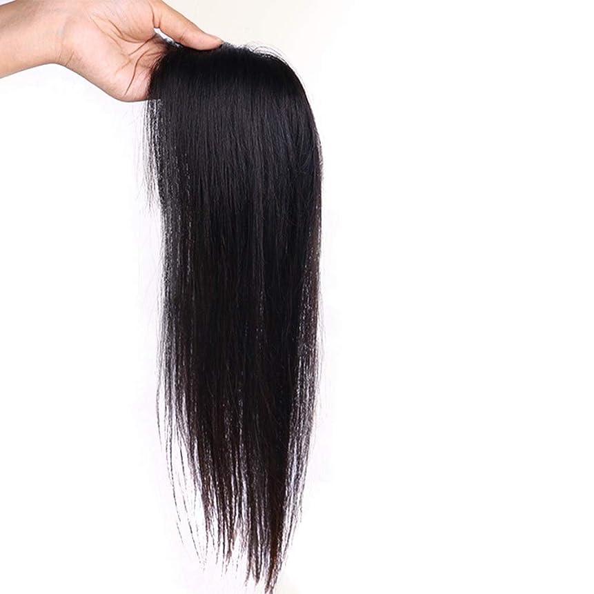 リングレットプレゼンテーションカバーかつら ヘアエクステンションで女性のリアルヘアクリップふわふわかつらロングストレートヘアデイリーパーティーウィッグ (色 : [7x10] 25cm natural black)