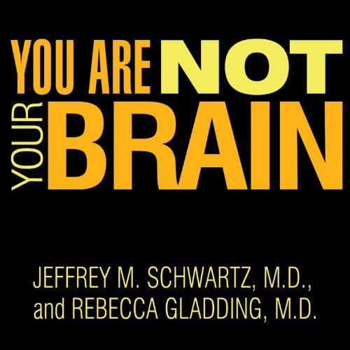 You Are Not Your Brain audiobook cover art