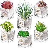 Set di 6 Pianta Artificiale Cactus Succulente con Pietre in Vetro Trasparente e Pentole Mini Pianta in Plastica Finta Realistico Verde in Vaso Pianta Finta con Pentola per Casa Ufficio Arredamento
